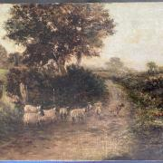 FREDERICK CARLTON 19C UNFRAMED OIL ON CANVAS - SHEEP, SIGNED LOWER RIGHT - 31CM  X 41CM - GOOD CONDITION, BEEN RE-LINED